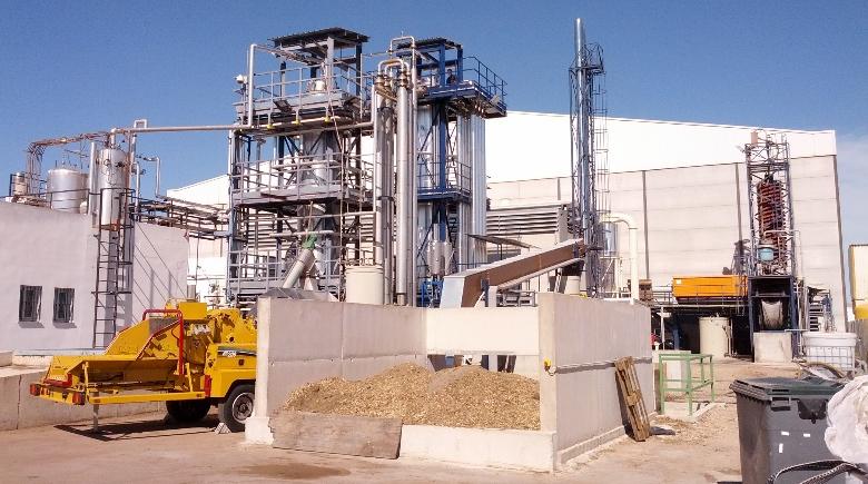 biomass generation plant ingelia