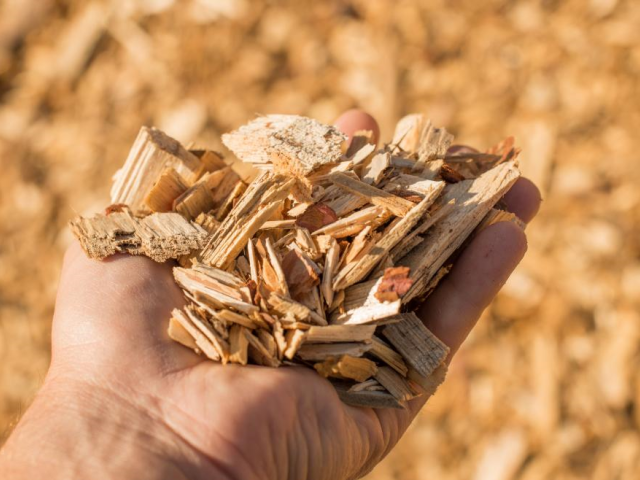 Madrid helps change to biomass