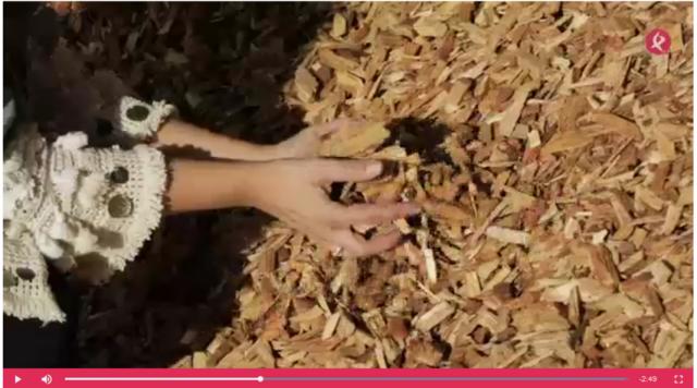 Video über das Potenzial von Biomasse in der Extremadura