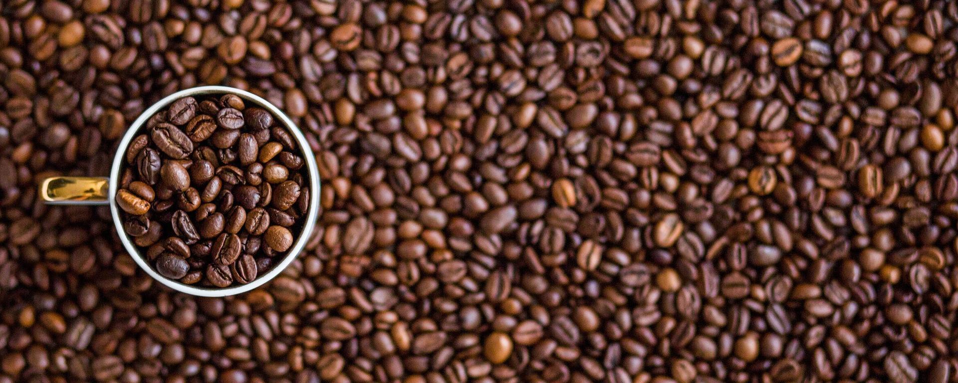 Chicchi di caffè per biomassa