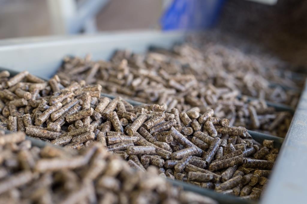 Nel 2022, la produzione di pellet supererà le 900.000 tonnellate.