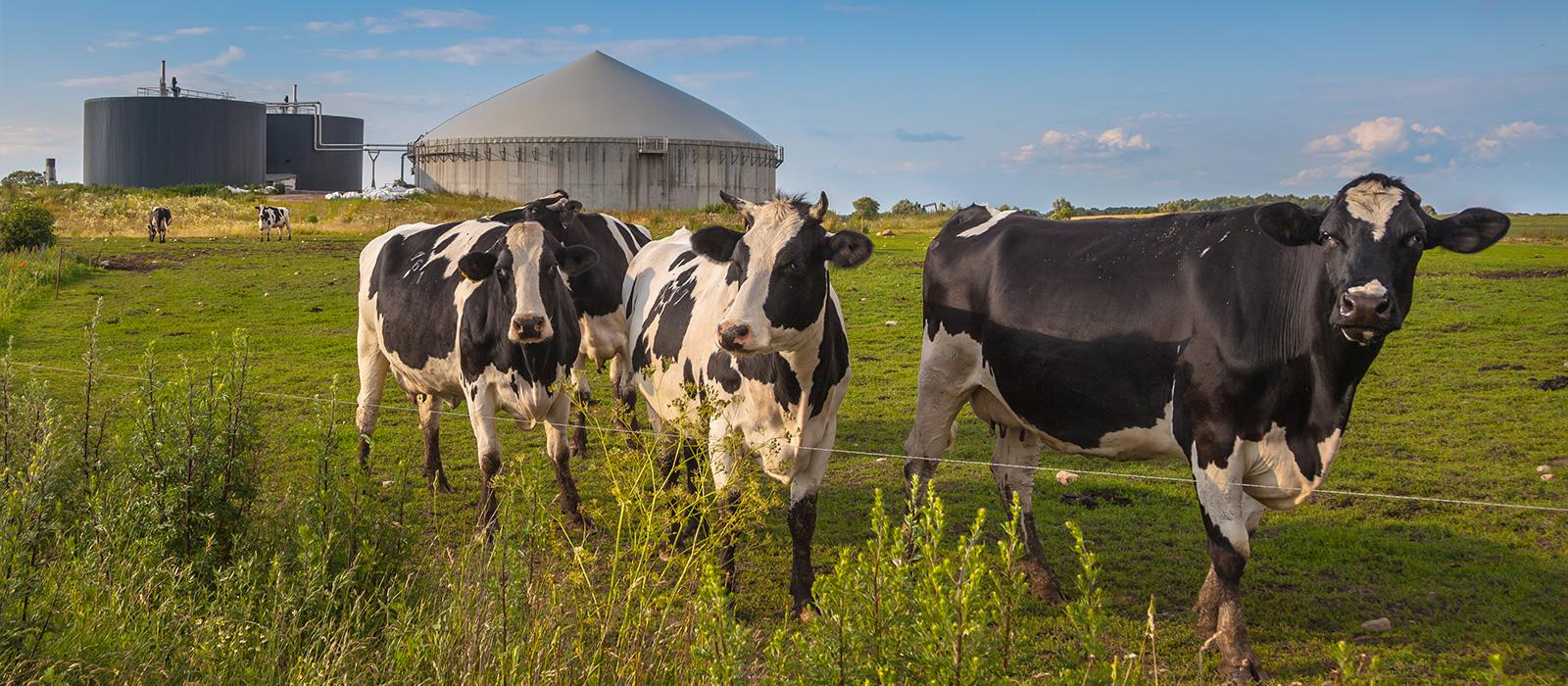 Representação de biogás