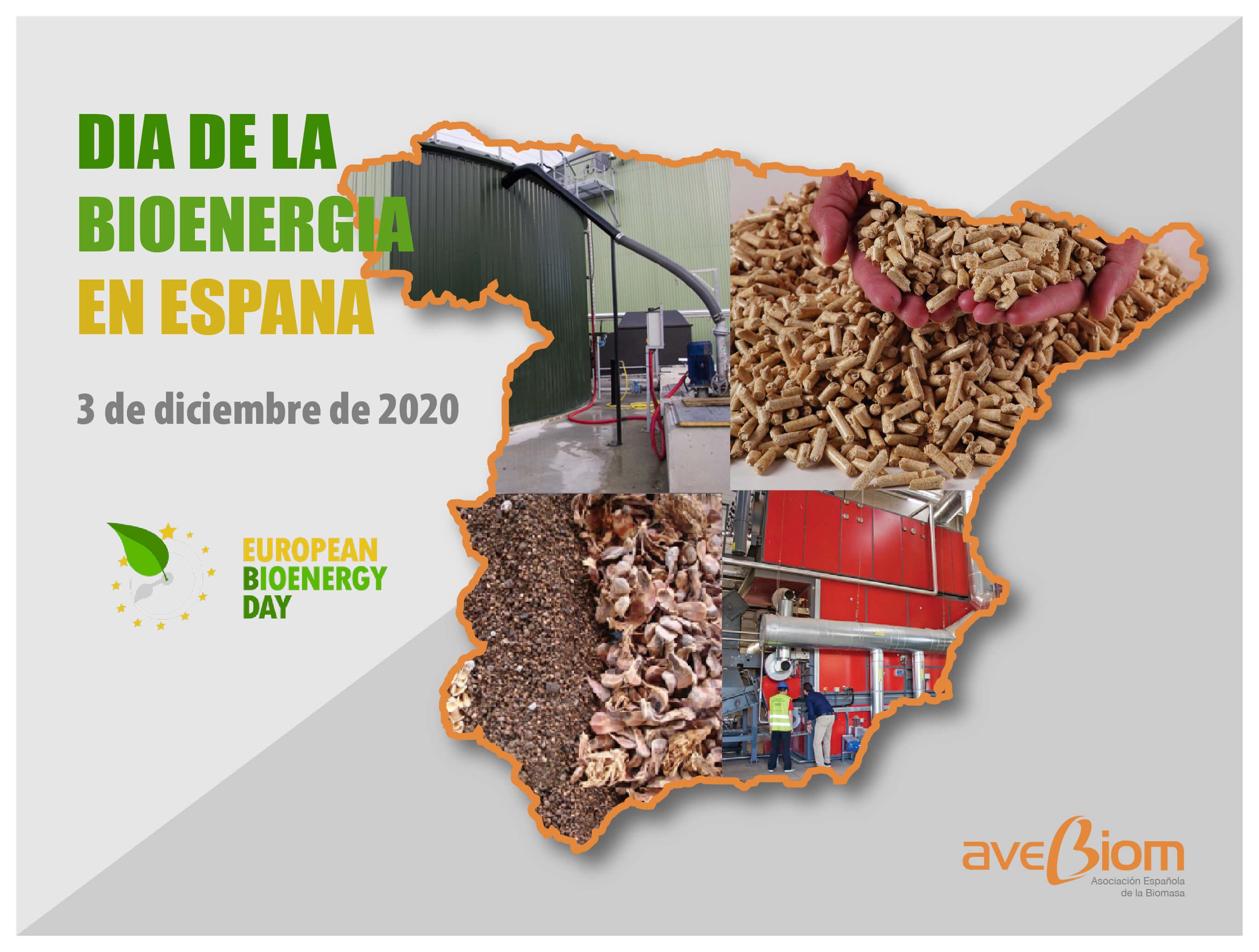 Journée de la bioénergie en Espagne