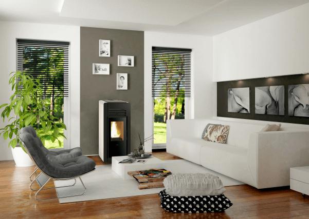 environment with ferluz biomass stove